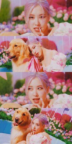 Lisa Blackpink Wallpaper, Rose Wallpaper, 2ne1, Bts Blackpink, Rose Ice Cream, Foto Rose, Blackpink Icons, Rose Park, Kim Jisoo
