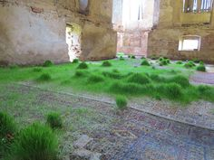 Tending to his work like a garden, New York-based Austrian artist Martin Rothgrows grass within the fibers of Persian rugs, constantly watering his works to ensure the grass grows lush from within the dense fabric. The end result of this project, first exhibited at an Austrian castle in 2012, will