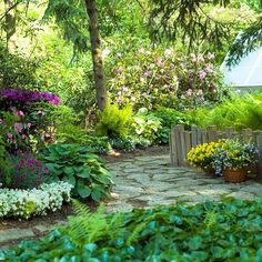 Sunlight dapples a shade garden