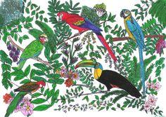 http://lindabook.lebookbusiness.com/LoosePapers/Artwork/birds1.jpg