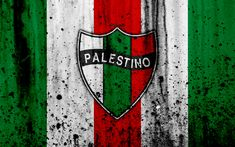 Download wallpapers 4k, FC Palestino, art, grunge, Chilean Primera Division, soccer, football club, Chile, Palestino, logo, stone texture, Palestino FC