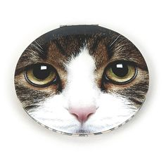 Catseye, Tabby Cat Clam Mirror. - Cat and Dog Crazy