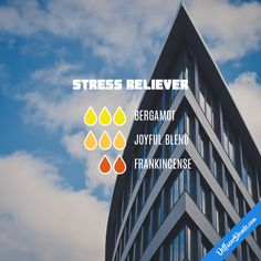 Stress Reliever - Essential Oil Diffuser Blend