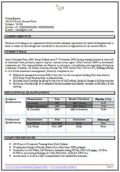 resume samples it professionals