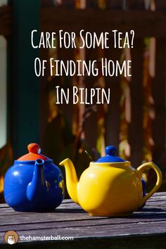 Tea | Tea Lover | Morning | Breakfast | Organic Food | Travel | Traveling | Traveller | Travel Blog | Wanderlust | Adventures | Australia