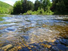 Loyalsock Creek near Williamsport, PA; I was carried down this river and rescued by my Uncle Joe