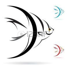 tatuaggio pesci: immagine di un pesce angelo su sfondo bianco