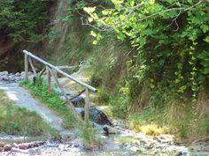 Bagni San Filippo, le acque termali