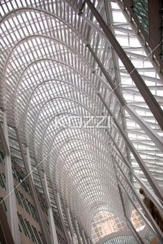 low angle shot of a arched structure. - Low angle view of a elegant arched structure with steel frames.