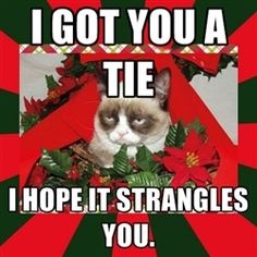 www.friskies.com/holidays | Grumpy cat lover! | Pinterest | More ...