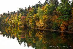 Autumn Colors - (JB) Jorge Bayonas Photography