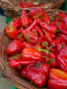 Red peppers, Galicia, Spain This would definitely make it into my #foodieslarder