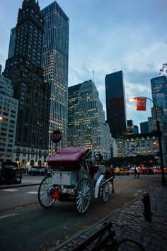 Carriage by Central Park, Fifth Avenue, New York City