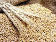 Agriculturile puternic subvenţionate din Rusia şi Ucraina afectează preţurile la cerealele româneşti | Ziarul Financiar