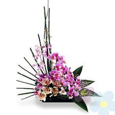 Arreglo de Orquideas Natsumi
