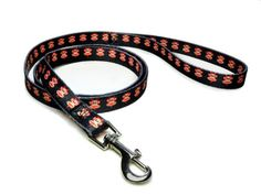 Paul Frank Dog Leash Devil Julius Large -- Check out this great product.