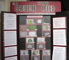 Abstract on Science Fair Project?