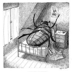 illustration of Kafka's Metamorphosis, unknown artist Gregor Samsa, Metamorphosis Art, Arte Horror, Printmaking, Creepy, Literature, Images, Illustration Art, Wildlife