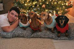 weiner wonderland - a dachshund christmas