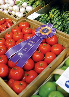 country fair tomatoes!