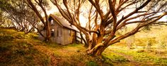 This is an original hut built for mountain accomodation in the A short drive from Falls Creek. Dan Proud Phot Macedon Ranges, Falls Creek, Land Use, Industrial Photography, Victoria Australia, Old Buildings, Australia Travel, Continents, Old Houses