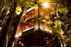 An amazing treehouse lodge in Arkansas.