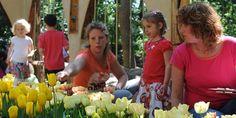 Fluwel's Tulpenland: ein einzigartiger Erlebnnispark in Nord-Holland. Hier lernen Groß und Klein spielerisch alles über Tulpen und Blumenzwiebeln.