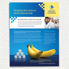 Health Insurance Brochure Template