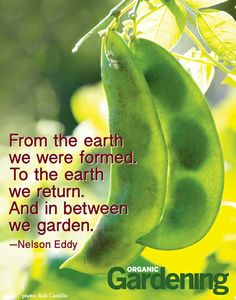 """""""From the earth we were formed. To the earth we return. And in between we garden."""" —Nelson Eddy"""