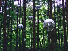 Cant wait for Fuji Rock next weekend! Taking the bullet train up from Tokyo. Disco balls suspended amongst trees at the Fuji Rock Festival
