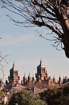 Edinburgh gothic Stewart's Melville College (from my garden L) (wil 6996)