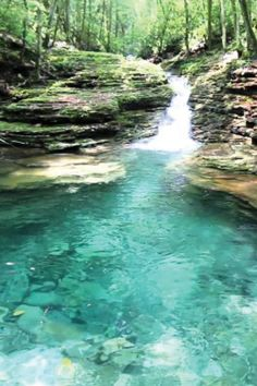 A Little Known Natural Oasis Is Hiding In Virginia And Devil's Bathtub Is Worth A Visit Virginia Vacation, Hiking In Virginia, Richmond Virginia, Virginia Beach, West Virginia, Beautiful Places To Travel, Cool Places To Visit, Beautiful Scenery, Romantic Travel