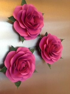 Most Popular Diy Paper Flowers Large If you are looking for Diy paper flowers large you've come to the right place. We have collect images about Diy paper flowers large including images, . How To Make Paper Flowers, Large Paper Flowers, Giant Paper Flowers, Big Flowers, Fabric Flowers, Potted Flowers, Flower Paper, Paper Peonies, Paper Roses