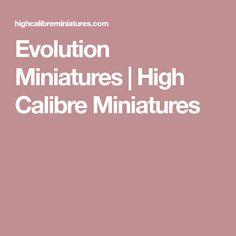 Evolution Miniatures | High Calibre Miniatures