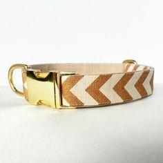 Dog Collar, Gold Dog Collar, Chevron dog collar, Dog Collar Gold, Summer Dog Collar, Modern dog collar, Adjustable dog collar