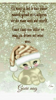 Evening Greetings, Afrikaanse Quotes, Goeie Nag, Good Night Sweet Dreams, Special Quotes, Night Quotes, Positive Thoughts, Teddy Bear, Messages