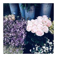 """1,712 Likes, 38 Comments - Marta Krol (@thesaltcaramel) on Instagram: """"Pretty flowers for you! 💋 #brightenyourday"""""""