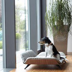 Canapé lit luxe pour chien Letto Mocca - Dog&Cat Design                                                                                                                                                                                 Plus