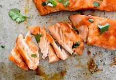 Sous Vide Cranberry-BBQ Salmon