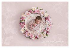 Etsy の 美しいデジタル新生児写真プロップ ピンクとクリーム色の花の巣 by LilleyBelleCouture