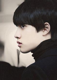  EXO  D.O. (Do Kyungsoo)