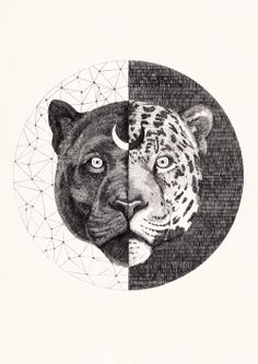leopardnewA4mini.jpg