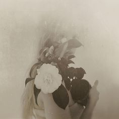 Something so classic about this look. Carnival Vintage Black and white photography . Colorful Roses, Pretty Pictures, White Photography, Double Exposure, Beautiful Flowers, Fine Art, Black And White, Painting, Pink