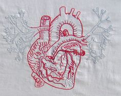 anatomically correct human heart by NIku Arbabi