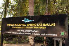 Las Baulas National Marine Park includes Tamarindo Estuary and Playa Grande (leatherback turtles), Carbon, Ventanas and Langosta