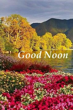 Morning Prayer Quotes, Good Morning Inspirational Quotes, Morning Greetings Quotes, Morning Prayers, Good Afternoon Quotes, Good Morning Msg, Good Morning Quotes, Good Evening Wishes, Night Wishes