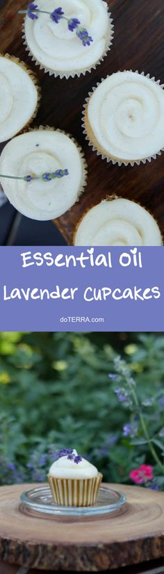 doTERRA Lavender Cupcakes with Lavender Cream Cheese Frosting Recipe