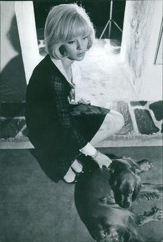 Vintage Photo of Sylvie Vartan Sitting with Her Dog | eBay