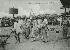 May 13 is Ploughing Day. This ancient Brahmin rite has been celebrated in many ways in Thailand over the years with Buddhist elements added in the Rama IV era.  After being abandoned for many years, the modern one-day version of the ceremony (and reintroduction of the ploughing itself) dates from the 1960s.  The actions of the oxen pulling the plough are said to foretell a good or bad growing season. In recent times large crowds gather at Sanam Luang to witness the event and collect the…