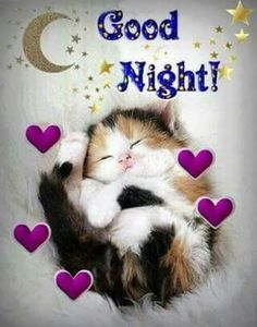 Good night sister and yours, sweet dreams 😋🌜💘🌛🌜☝🌛💖. Good Night Cat, Good Night Sister, Good Night Sleep Tight, Good Night Prayer, Cute Good Night, Good Night Friends, Good Night Blessings, Night Love, Good Night Sweet Dreams